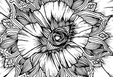 couverture-fleurs